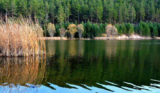 Çamkoru-Göleti-Tabiat-Parkı-2